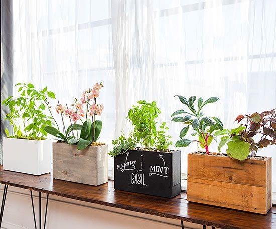 Countertop Aquaponics System : hydroponics system aquaponics countertop planters countertops ...