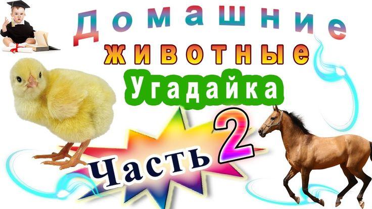 Угадайка Домашние животные Часть 2 для маленьких детей и малышей