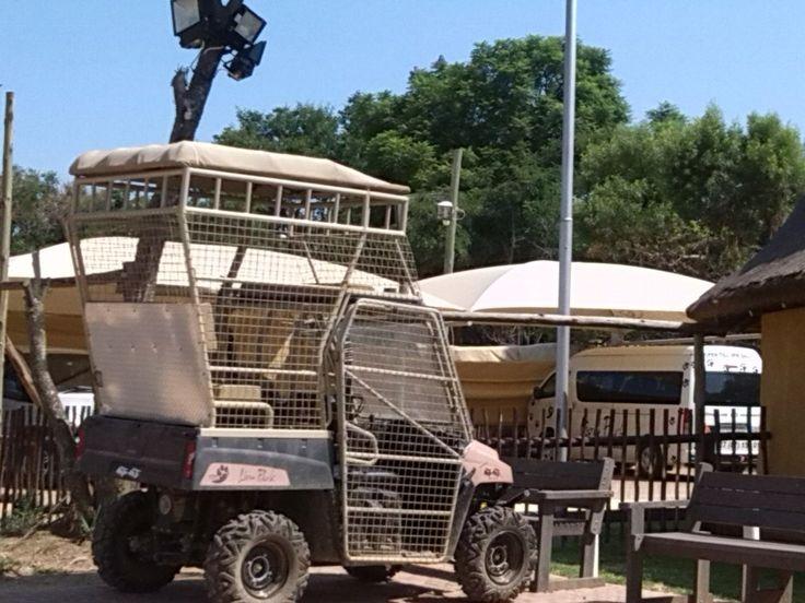 Afrikai szafari és kaszinó - Lion park Joburg