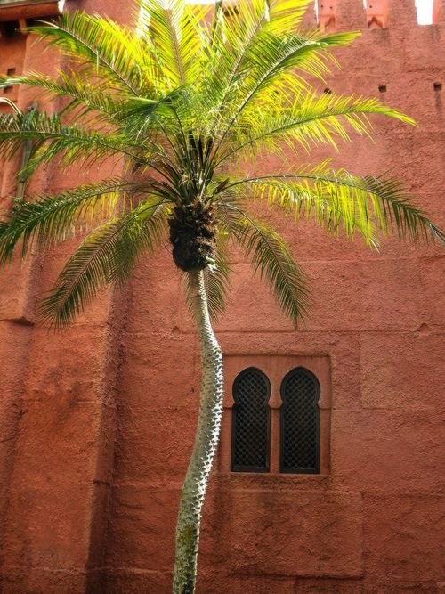 Morocco.... land of 1001 nights....  There is still so much to discover:  www.asilahventures.com