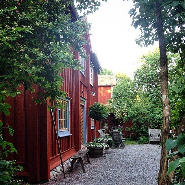 413 vind-ik-leuks, 16 reacties - P-O Jerner (@perolofjerner) op Instagram: 'At last, a few drops of rain. #garden #trädgård'