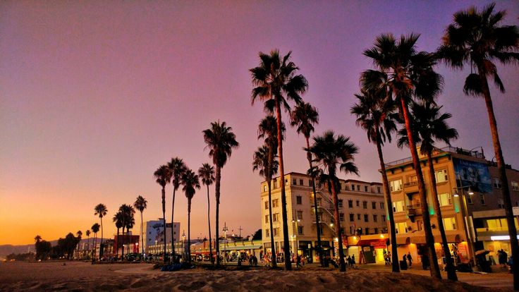 Venice Beach 🌴💥 @lliv_