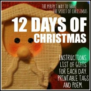 12 Days of Christmas : Spread the Christmas Spirit to another family this year, made EASY! Instructions, list of gifts for each day and printable tags.