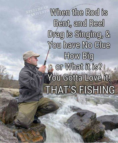 Time Flies When You Re Having Fun Quote: Pin By 163x549 Lee On Fishing Jokes / Quotes