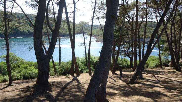 Hamsilos fjord-Sinop,TURKEY