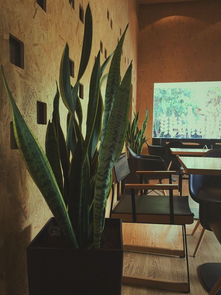 #designinterior #coffeshop