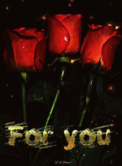 ♥  ♫  a rose affair  ♫  roses for me  ♫ ♥ Decent Image Scraps: For You Animation