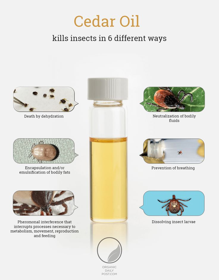 How Cedar Oil Kills Ticks - Infographic.... not that I have this problem... but its always good to know!!! Natural, organic way to get rid of ticks, insects form your garden!