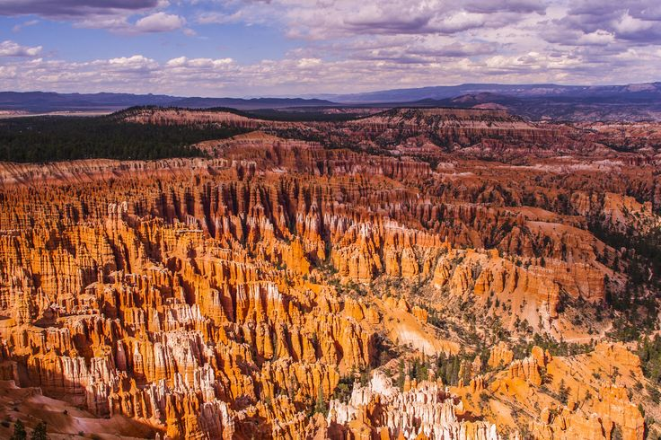 a bryce canyon summer - a bryce canyon summer