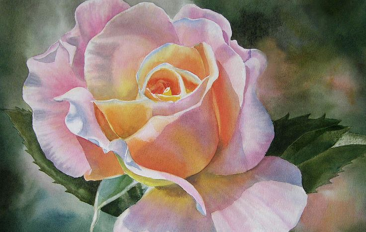 Pink And Peach Rose Bud Painting by Sharon Freeman - Pink And Peach Rose Bud Fine Art Prints and Posters for Sale
