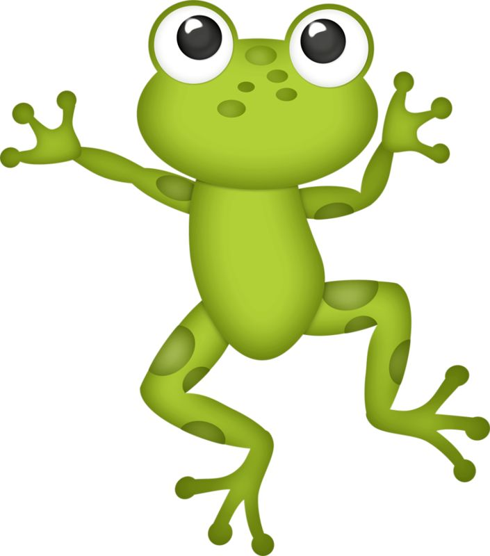 Лягушка нарисованная для детей картинки