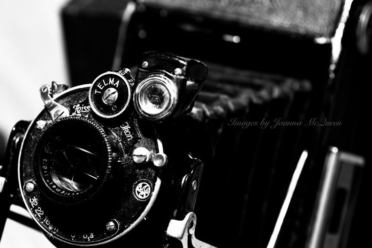 Photograph Telma all about it! by Joanna  McQueen  on 500px