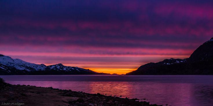 Amazing colour last night - crazy sunset last night