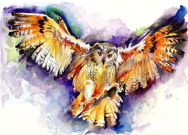 Night Owl Watercolor Hunting Owl Flying Brown Owl By Tiberiu