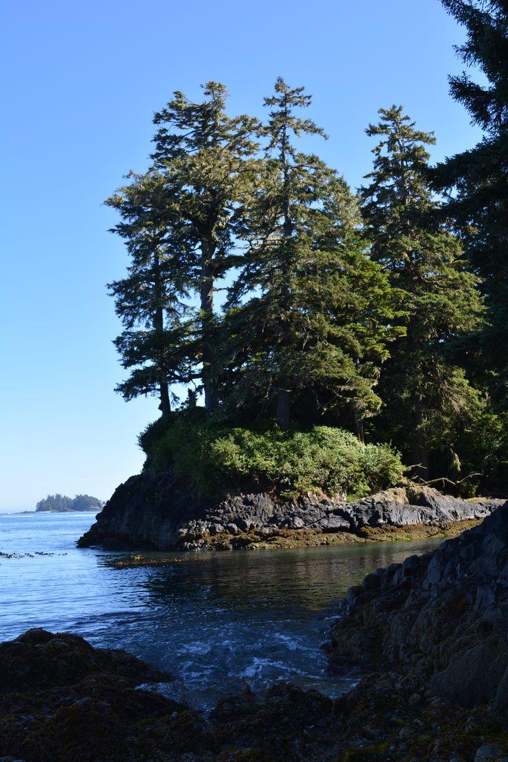 Florencia Bay  Pacific Rim National Park Vancouver Island, BC