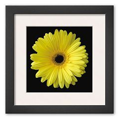 "Art.com ""Gerbera Daisy Yellow"" Framed Art Print By Jim Christensen"