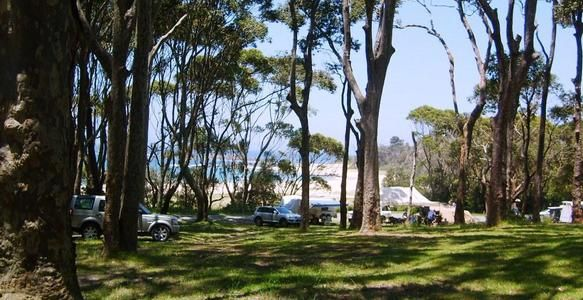 Ceremony: Local view-point. Reception: Mystery Bay Camp-ground. Cost: $4-$10. Non-powered. Fire allowed.