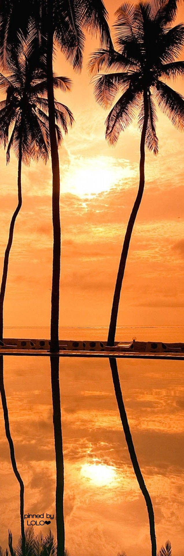 Hawaiian #Sunset | LOLO❤︎