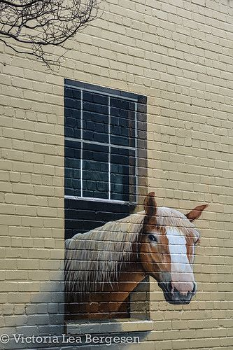Would love to do something like this on the side of the chicken coop. With a chicken instead of a horse, of course.