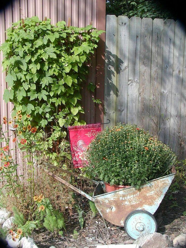 Flower Garden Ideas In Michigan 9 best vintage outdoor ideas images on pinterest | outdoor ideas