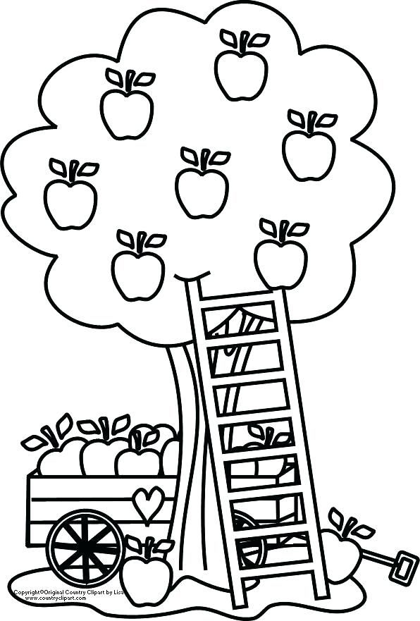Coloring Pages Apple Apple Tree Coloring Page Apple Tree Coloring