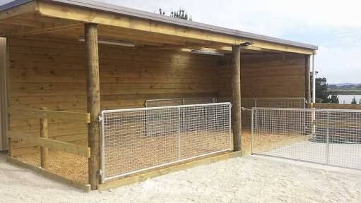 Image result for covered yards horses