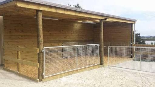 Resultado de imagem para covered yards horses