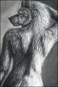 Lycan 21  Female_Werewolf_by_hellhound09