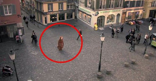 Viral Nova   We all feel the need to be close to other people, a need for love and embrace. Too often we judge others and keep them at arm's length. In this video by Pro Infirmis, a Swiss organization that helps people with disabilities, a man dressed in a cuddly bear costume walks around a...