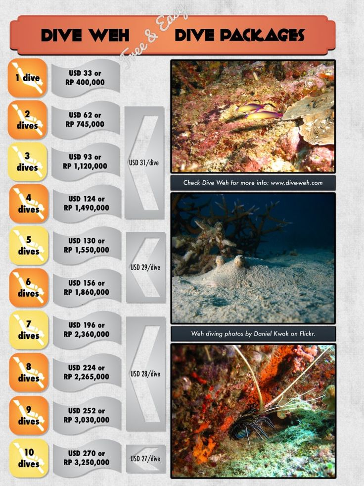 Dive Packages in Pulau Weh, Aceh, Indonesia. www.dive-weh.com