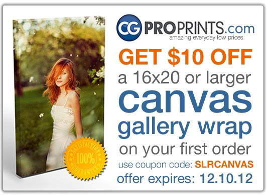 Canvas Print Review Editorial - Our Favorite Canvas Maker