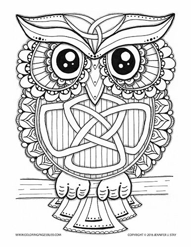Coloring Page For Adults Owl This Charming Celtic Has A Trinity