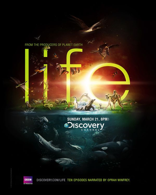 Discovery Channel - Life on Behance