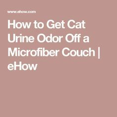 How to Get Cat Urine Odor Off a Microfiber Couch   eHow