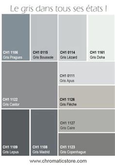 """Résultat de recherche d'images pour """"nuance de gris peinture""""   Nuancier peinture, Déco salon"""