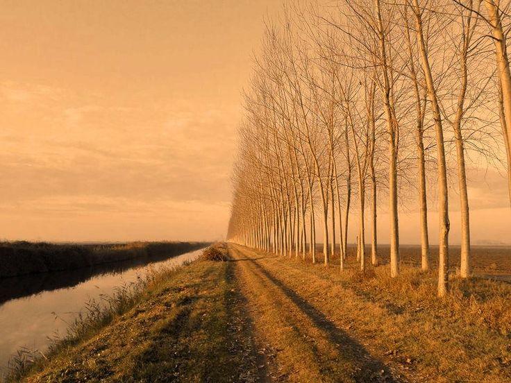 https://flic.kr/p/Hp34AX | Landscape of autumn  - North Italy | Paesaggio Autunnale - Pianura Padana - Comacchio /Ferrara
