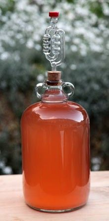 Rhubarb wine from The Guardian by John Wright