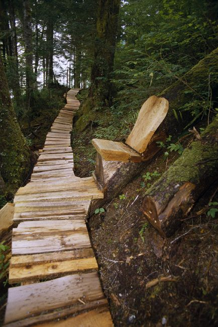 5 Places to Lace Up Your Hiking Boots    •West Coast Trail – British Columbia, Canada   This is a rugged, challenging but extremely rewarding trail. The 75-kilometre path takes you through old growth forest to deserted beaches and headlands in this totally stunning part of the world.