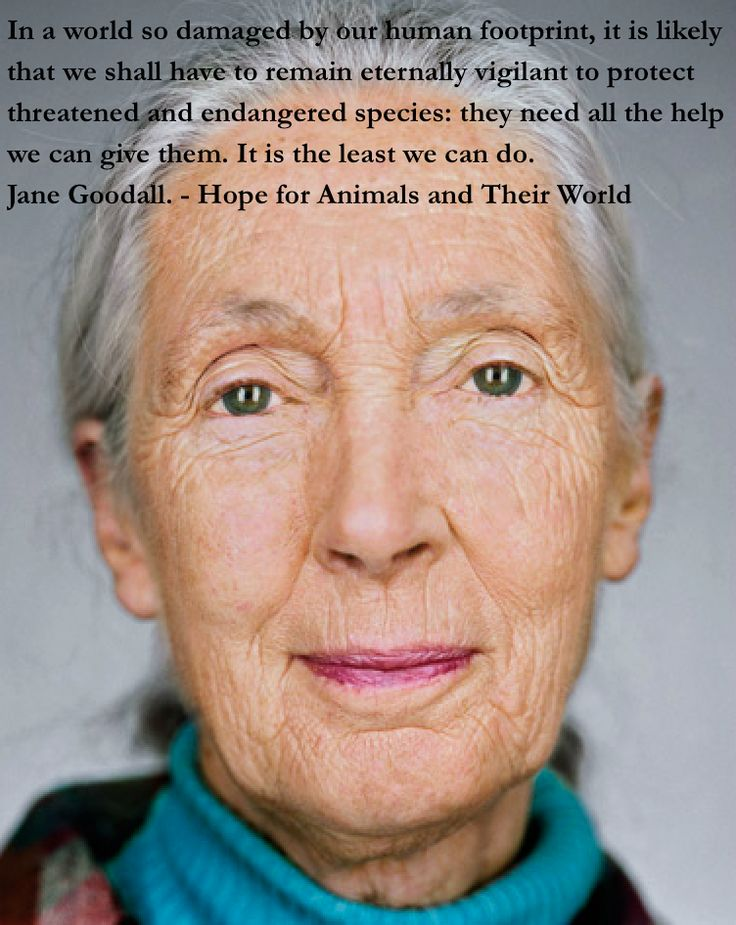 Jane Goodall.- an inspired and gracious lady who has led the World in her research of the natural kingdom. She deserves every bit of support we can collectively offer.