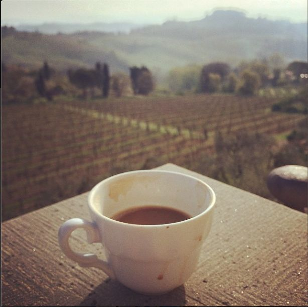 Agriturismo Guardastelle - Sovestro in Poggio Winery in San Gimignano Tuscany  www.guardastelle.com