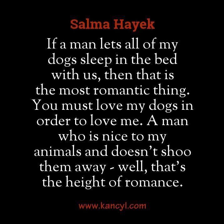 """If a man lets all of my dogs sleep in the bed with us, then that is the most romantic thing. You must love my dogs in order to love me. A man who is nice to my animals and doesn't shoo them away - well, that's the height of romance."", Salma Hayek"
