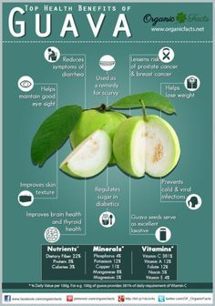 Top Health Benefits of Guava