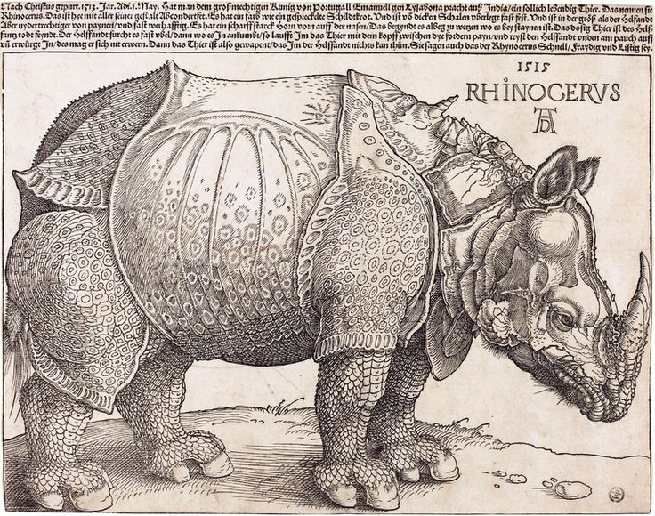 A Time for Refusal - The New York Times. The reference. Is to The Rhinoceros, ionesco's play. Timely, in ft fortunately.