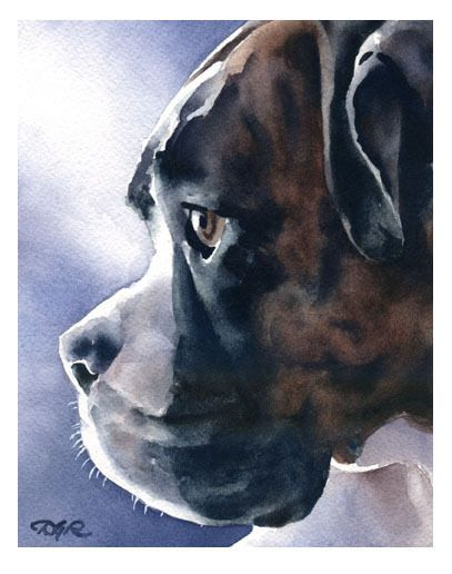 """BRINDLE BOXER"" Watercolor Dog ART Print Signed by Artist DJR #Realism"