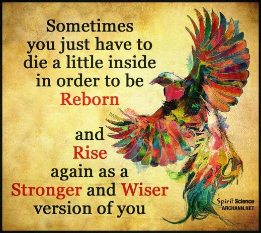 Reborn wiser and stronger