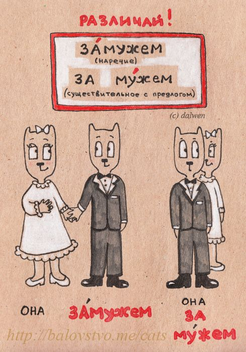 Картинки по русскому языку прикольные, картинка смешная картинка