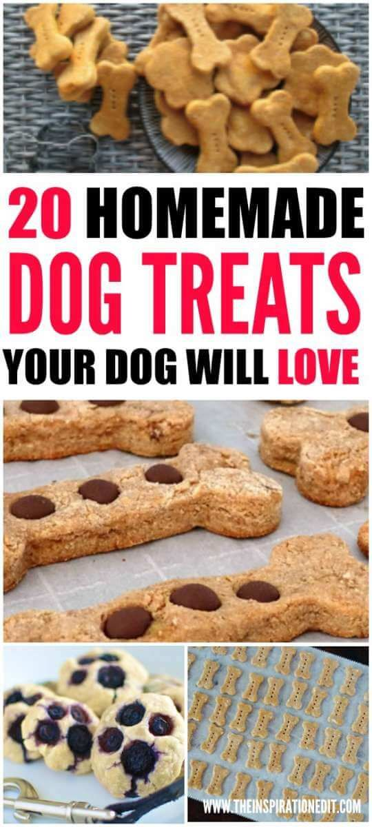 20 Homemade Dog Treats Your Dog Will Love. DIY Food for your dog. The perfect treat for a good boy.
