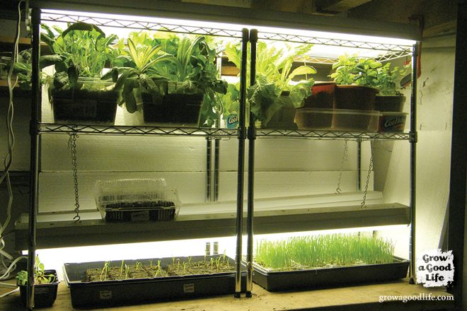 Build a Grow Light System for Starting Seeds Indoors | Grow a Good Life for the LARGE home