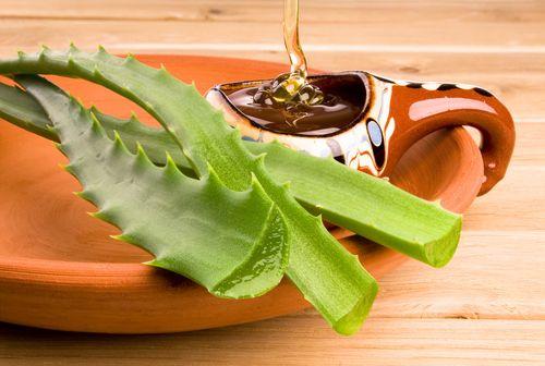 Neste artigo, falaremos sobre os benefícios dos sabonetes naturais e ensinaremos a receita do delicioso sabonete de babosa e mel, confira.