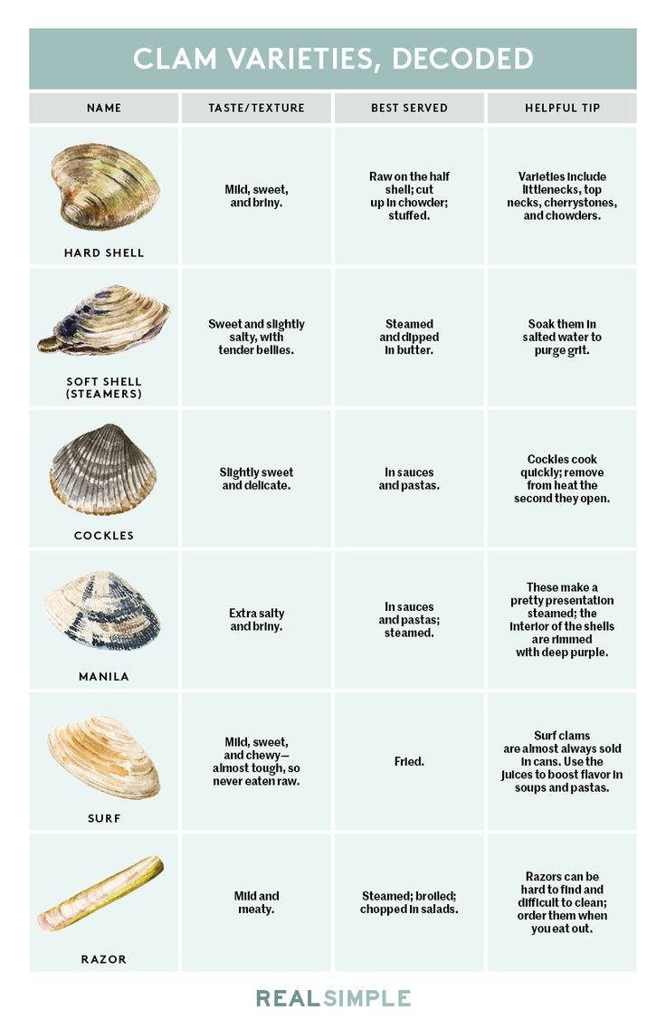 Here's Every Type Of Clam In One Simple Chart
